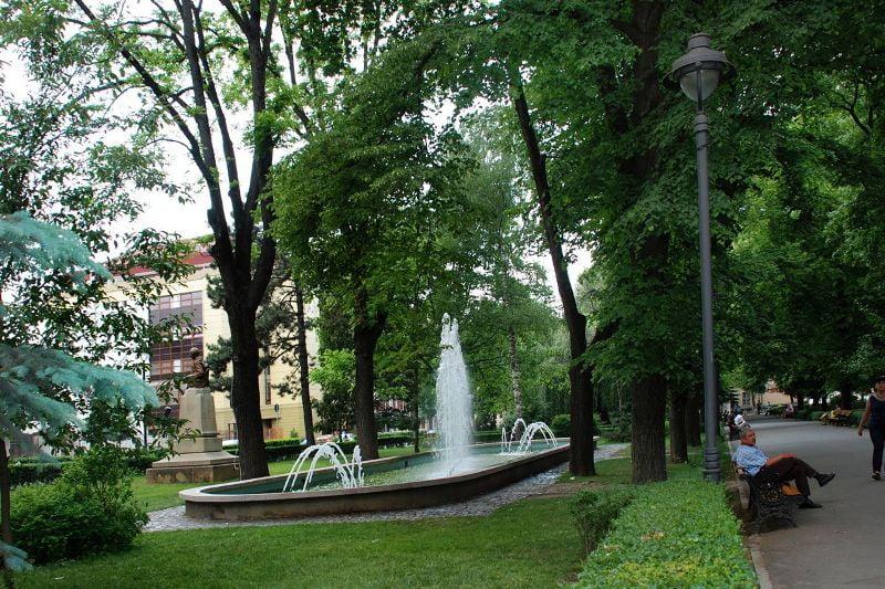 Peste 200 de arbori vor fi plantati in Sibiu