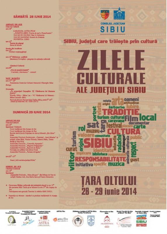 zilele culturale 2