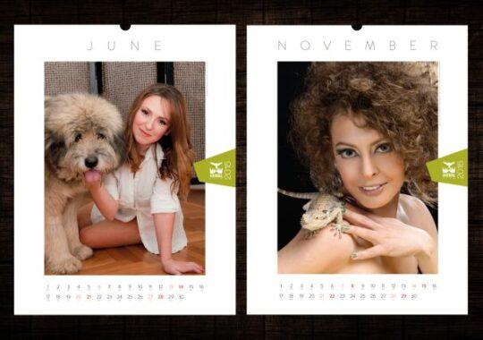 Feminitatea, in scop nobil pentru ajutorarea animalelor fara stapan!