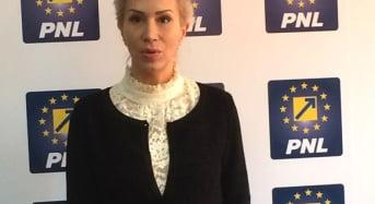 Raluca Turcan: Ministerul sa organizeze licitatie fara dedicatie pentru manuale
