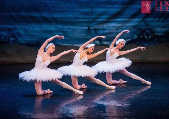 Reprezentatii de exceptie la Teatrul de Balet Sibiu, in luna martie