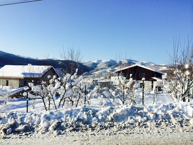 Vreme de primavara doar astazi la Sibiu. De maine vin ninsorile!