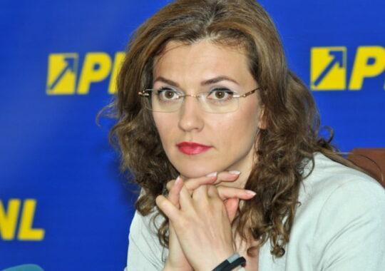 Sefii PNL vin la Sibiu. Politica, teatru si alegeri