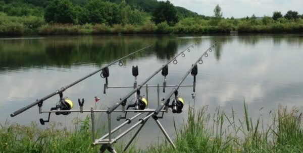 cupa ulbs la pescuit sportiv