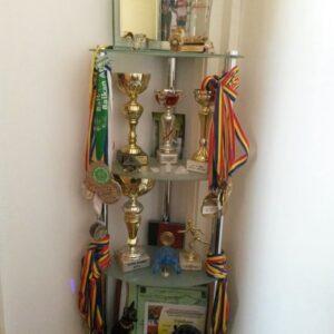 2.Raluca Oprica, Premii, medalii, cupe, diplome