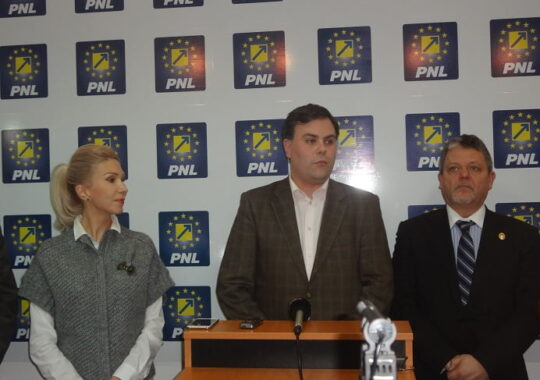 PNL pariaza pe cultura la Primaria Sibiu. Candidat surpriza se lupta cu Astrid Fodor