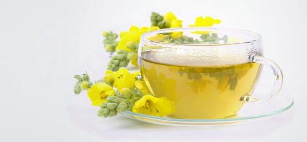 tuse rebela, ceai lumanarica