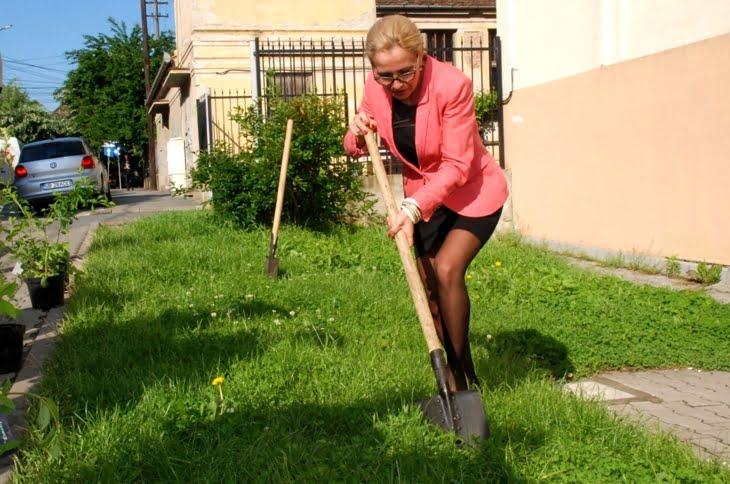 decanul de la medicina, Mihaela Cernusca Mitariu, planteaza un arbore